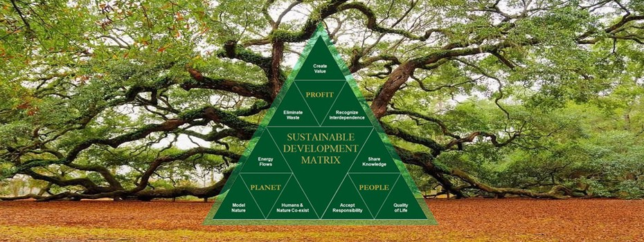 green development strategy, sustainable development matrix, SLDI Code, land development ecology, quality of life, fractal development matrix